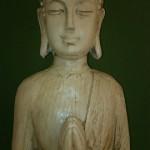 Herzlich willkommen bei Yoga Engel